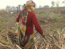 महाराष्ट्र के इस गांव की महिलाएं निकलवा देती है गर्भाशय