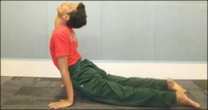 Yogastoryarya