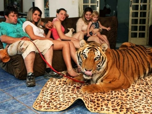 कुत्ता-बिल्ली नहीं, शेर, चीता और अजगर  पाले हैं इन्होंने घर में!