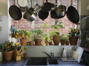 किचन सिंक के नीचे न रखें ये चीजें