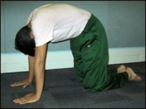 Yoga Marjariaasan Ss