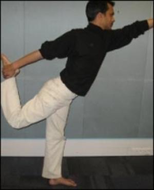 Yoga Natraj Ss