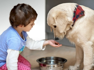 Do Pets Help Child Development