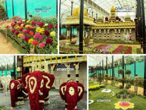 The Flower Show At Lalbagh Botanical Gardens Bangalore 006146 Pg1.html