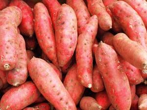 Reasons How Sweet Potatoes Help Weight Loss