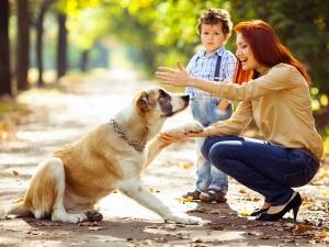 Pros Cons Feeding Your Dog With Bones