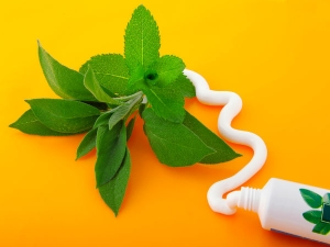 Natural Alternatives Toothpaste