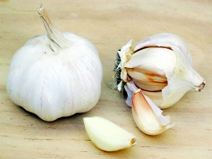 Garlic High Blood Pressure