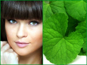 Beauty Benefits Brahmi