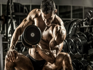 Best Exercise For Biceps In Gym