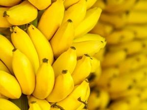 Should You Eat Bananas If You Re Diabetic