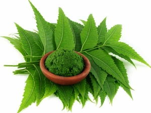 Neem Dandruff Neem Hair Packs