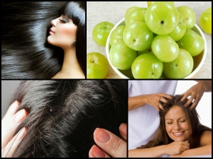 Unknown Benefits Amla Oil Healthy Hair
