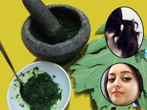 Best Benefits Papaya Leaf Juice Skin Hair