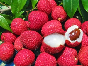 Lychee Fruit Nutrition Facts