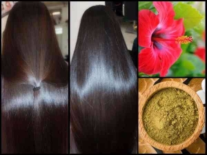 Diy Hibiscus Hair Masks Silky Smooth Hair