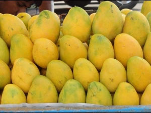 How Many Mangoes Should You Eat In A Day So You Dont Get Boils