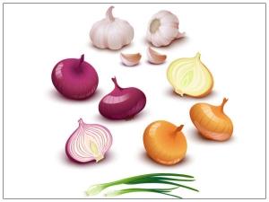 Do Onions Garlic Prevent Cancer