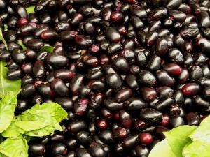 Jamun Seed Powder Diet For Diabetics