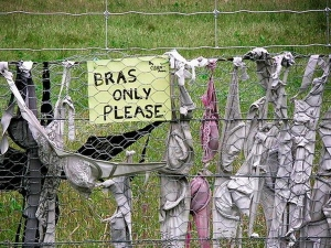 Bradona Features Thousand Bra Hanging On Long Fence