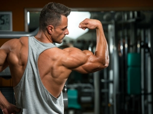 The Cheapest The Best Carbohydrate Sources Muscle Gain