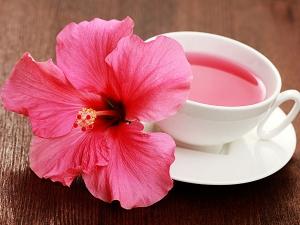 Health Benefit Hibiscus