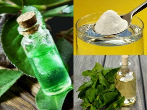 Homemade Mouthwashes Maintaining Oral Hygiene