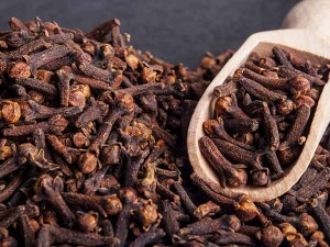 Homemade Clove Recipe Diabetics Regulate Blood Sugar