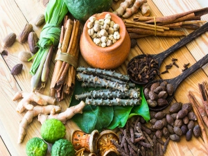 Proven Ayurveda Herbs That Aids Weight Loss