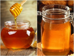 Honey Contains Harmful Pesticides Study Warns