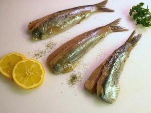 Fish The Ultimate Brain Food