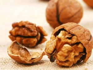 Top Benefits Eating Few Walnuts Daily
