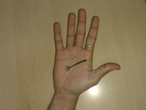Do You Have Trident Sign On Your Palm