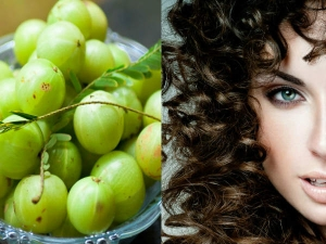 Foods Healthy Natural Hair Growth