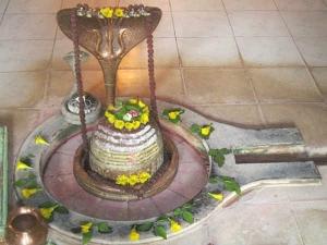 Shivratri 2018 Remove Kaal Sarp Dosh Effects This Shivratri