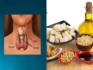 Thyroid Diet Foods Hypothyroidism Weight Loss