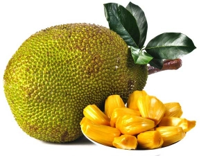 Benefits Jack Fruit During Pregnancy