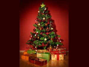 Six Vaastu Defects Christmas Tree Can Remove