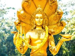 Shat Tila Ekadashi Benefits Puja Vidhi Vrat Katha