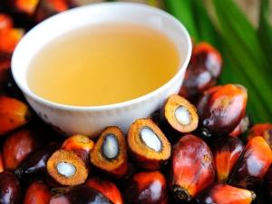 Amazing Health Benefits Palm Oil