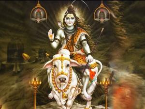 Interesting Story Behind Lord Shiva S Vehicle Nandi
