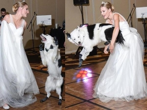 Bride Has First Dance With Her Best Dog
