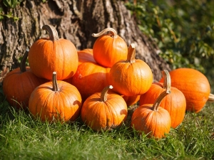 Amazing Benefits Of Pumpkin For Skin And Hair