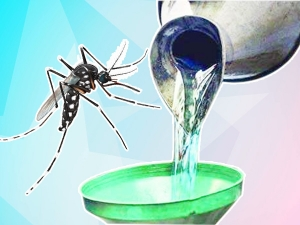 Kerosene And Diesel To Kill Larvae Of Mosquitoes Prevent From Malaria