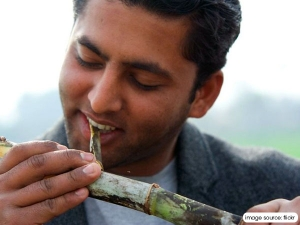 Oral Health Benefits Of Chewing Sugarcane