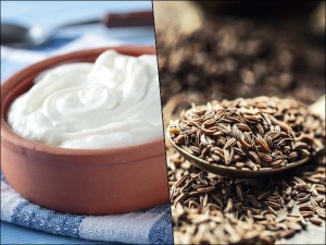 Health Benefits Of Eating Roasted Cumin Seed And Curd