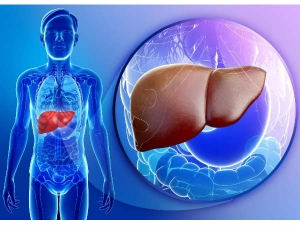 Fatty Liver Causes Symptoms And Home Remedies