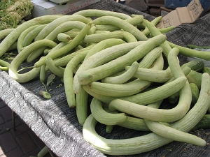 Health Benefits Of Drinking Juice Of Snake Cucumber