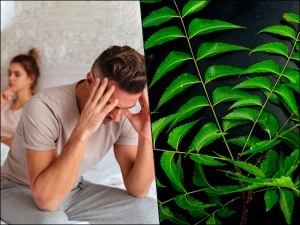 Did You Know Consuming Neem Leaves Can Lead To Male Infertility