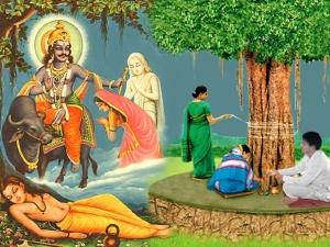 Vat Purnima Vrat Date Tithi Puja Vidhi Significance Katha